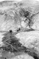 Lone Rock (peterkelly) Tags: bw canon 6d europe iceland gadventures bestoficeland skaftafellnationalpark falljökullglacier ice rock glacier glacial hike crack sediment