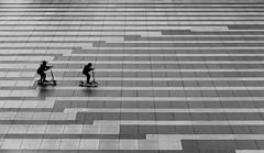 (cherco) Tags: boy light lonely play architecture arquitectura blackandwhite blancoynegro skateboard floor canon 60d composition composicion city ciudad calle street lines silhouette shadow silueta urban sombra madrid