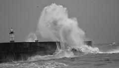 1S9A5415 (saundersfay) Tags: waves lighthouse rough seas coast beach cliffs dangerous sunset foam spray