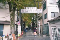 無法成為野獸的我們   東京 鬼子母神社 (段流) Tags: sony a7m3 a73 2875mm