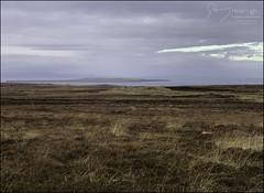5 - Towards Road's End (North Light) Tags: landscape winter january peat heather nc500 a99 johnogroats stroma orkneyislands pentlandfirth northcoast caithness scotland
