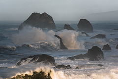 Light Break (Bob Bowman Photography) Tags: sea ocean waves coast rock morning light surf water beach landscape seascape sonomacoast northerncalifornia wave birds nikon pacific