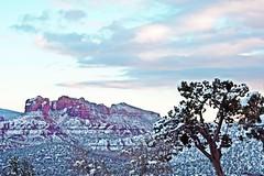 IMG_2824 (Karen Wilson Hagy) Tags: sedona redrocks oakcreekcanyon snow desert muledeer antlers clouds arizona