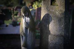 201901_alterFriedhofOF (willykerntopp) Tags: alterfriedhofoffenbach trauer stille takuar1885