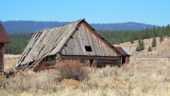 Going, Going ... Almost Gone (Eclectic Jack) Tags: eastern oregon trip october 2018 rural agriculture farm farming autumn fall mountains irrigation abandoned house structure home
