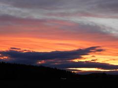 Gotta ask my son, if he can put that on a canvas..... (elisabeth.mcghee) Tags: abendrot abendhimmel abendsonne sunset sonnenuntergang himmel sky wolken clouds unterbibrach bäume trees wald forest oberpfalz upper palatinate