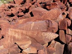 Western Australia - Burrup - Ancient Pools - Petroglyph - AP35 (spiderorchid) Tags: aboriginal rock art petroglyphs