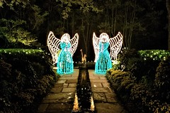 Bellingrath Magic Christmas in Lights (ciscoaguilar) Tags: christmas alabama bellingrath lights theodore