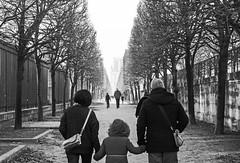 B&W-1 (albyn.davis) Tags: paris france europe blackandwhite people walking trees park urban city contrast perspective