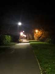 365.318 - It's a struggle (AmyGStubbs) Tags: 14nov18 2018 365the2018edition 3652018 day318365 night path iphone7