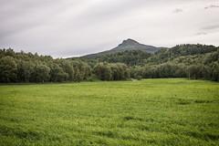 Circle (BlossomField) Tags: meadow mountain nature kjerringøy nordland norwegen nor