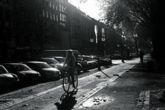 warm light of late autumn 3@KÖ, Düsseldorf, Germany (Amselchen) Tags: touit1832 zeisstouit1832 zeiss planar carlzeiss fujifilm xt2 bnw blackandwhite light shadow street cars bicycle road sidewalkway people