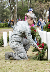 171216-F-TJ728-1058 (wreathsacross) Tags: 6amw 6airmobilitywing macdillafb macdill wreathsacrossamerica nationalcemetery floridanationalcemetery bushnellflorida bushnell florida remember veterans holidays tampa unitedstates us
