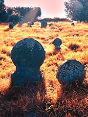 o-range (minminatmidnight) Tags: orange red fujifilmfinepixs100fs nordirland northernireland fermanagh irland ireland river fluss erne upperlougherne galloonisland cemetary friedhof alt old graveyard grave gravestone headstone