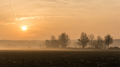 Autumn morning (szeifertg) Tags: morning autumnmorning autumn landscape sonyalpha