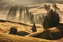 Alpine morning... (hoangcuongnokia8800) Tags: 500px alpen alps dolomiten dolomites dolomiti italia italien italy south tyrol trentino veneto beluno alpe di siusi seiser alm europe mountains huts chalets unesco daniel rericha meadow alpine trees