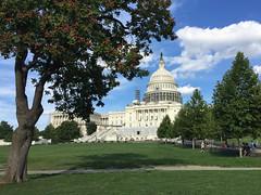 US Capitol, Washington D.C. (doadoodle) Tags: uscapitol capitol capitoldome washingtondc dc usgovernment government capitolhill capitolhilldome seatofgovernment politicalscene legislativehall dome statehouse