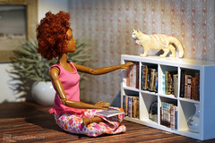 which book today, chilli ? (photos4dreams) Tags: dress barbie mattel doll toy photos4dreams p4d photos4dreamz barbies girl play fashion fashionistas outfit kleider mode puppenstube tabletopphotography diorama scenes 16 canoneos5dmark3 schleich cat ooak plastic spielzeug plastik photo katze repaint custom oneofakind upgrade dolldesigner design mainecoon