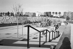 190104_Parc_Central_014 (Stefano Sbaccanti) Tags: bw blackandwhite bn parccentral valencia minox35gl kentmere400 bellinihydrofen analogicait analogue analogico argentique spain spagna selfdeveloped 2019 city