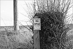 Sign to Dale Cottage off Trundlegate Monochrome (brianarchie65) Tags: northnewbold trundlegate bikers bikes hills hedges roads seats people monochrome blackandwhite blackandwhitephotos blackandwhitephoto blackandwhitephotography blackwhite123 blackwhiterealms unlimitedphotos ngc canoneos600d geotagged brianarchie65 eastyorkshire eastriding yorkshire