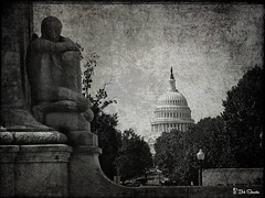 View of the Capitol (Bob Shrader) Tags: olympuspenf olympusmzuikodigitaled12100mmf40ispro 50 f4 13200sec 200iso raw microfourthirds mft m43 mirrorless building government uscapitol structure northamerica unitedstatesofamerica america us unitedstates usa washingtondc districtofcolumbia tree sky stone zoomlens olympusmzuikodigital12100mmf40ispro on1 photoraw2019 preset luts halide photomorphis texturebites texturebites4 no4 blackandwhite monochrome texture photoborder photoedge photoframe stylized colorgrading washington