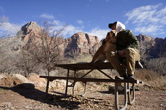 _A7R7780 (KevinXHan) Tags: zions national park nature hiking hike outdoors utah dog golden retriever vacation travel parus trail