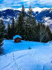 The only one ... (Navis06) Tags: blanc courchevel savoie montagne bois chalet neige ciel arbres