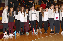 IMG_4322 (SJH Foto) Tags: girls high school volleyball garnet valley north allegheny state semifinals