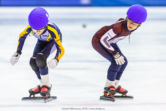 CPC20829_LR.jpg (daniel523) Tags: speedskating longueuil sportphotography patinagedevitesse skatingcanada secteura race fpvqorg course actionphotography lilianelambert2018 arenaolympia cpvlongueuil