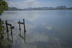 Lagoa (mcvmjr1971) Tags: ilha do pontal lagoa piratininga niteroi mmoraes nikon d800e lens sigma 2435 art f20