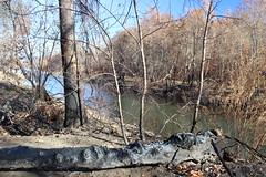 Butte Creek (FISH-BIO) Tags: wildfire burn buttecreek campfire fire