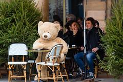 Bear2 (pseudodejapris) Tags: bear paris ours plush peluche