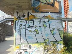 055 (en-ri) Tags: resut nero bianco verde torino wall muro graffiti writing parco dora