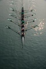 Crew, Foster City (donberry37 (SF Bay Area)) Tags: rowing eights regatta shell crew oar oars