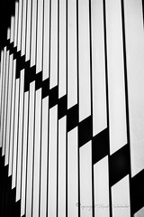 Shadows on a bannister - Schaduw op een trapleuning (Ruud.) Tags: ruudschreuder sony7m2 sony alfa 7 m2 nik passerelle roosendaal noordbrabant spoor spoorbrug stairway stairs trappen elevator footbridge architectuur architecture architektur arquitectura architettura arquitetura netherlands paysbas brabantslandschap bw zwartwit silverefex lijnen lines bannister leuning trapleuning shadow schaduw west8 sonyalfa sonyalpha ilce7m2 2870mm sonyalphadslr