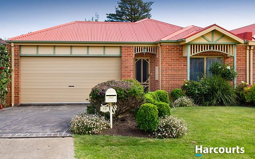 19 Wilona Way, Berwick VIC 3806