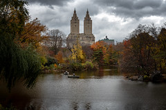 One of my favorite shots in Central Park. (RCorsmeier) Tags: newyork newyorkcity newyorkinstagram centralpark centralparknyc centralparkmoments centralparknewyork nyclife nyc ilovenewyork lovenewyork❤️ ilovenewyorkcity newyorkbestshots travel travelphotography landscape photooftheday landscapephotography nikonphotographer american americanstyle nikonnofilter cincishooters