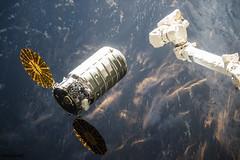 Cygnus capture. Original from NASA. Digitally enhanced by rawpixel.