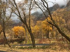 IMG_2869 (August Benjamin) Tags: provorivertrail provocanyonparkway provocanyon provoriver provo orem fall utah mountains trees fallcolors