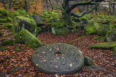 Padley Gorge (MDJL Landscapes) Tags: padleygorge autumn peakdistrict nationalpark millstones woodland nikon landscape photography