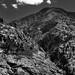 Mountain Peaks of the Okanogan-Wenatchee National Forest (Black & White)