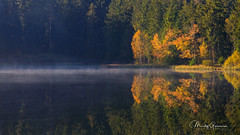 Ethereal autumn sunrise at the pond (moritzgyssler) Tags: autumn jura lake herbst sunrise etangdelagruère