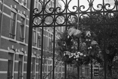 Bouquet (Arne Kuilman) Tags: olympusom40 apx400 iso400 id11 homedeveloped 1045 amsterdam nederland netherlands 50mm walk winter bouquet gate hek