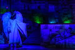 _DSC0469 (Carlo Granisso) Tags: musical church chiesa teatro theatre actor actress jesus sanfrancesco piece mask forzavenitegente maddalena altare animals animali ballo dancing bw blackandwhite torino turin nikon d7500 nikond7500