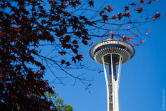 Space Needle, Seattle, Washington (thedot_ru) Tags: spaceneedle seattle washington state wa usa america travel adventure wanderlust exploration trip tourism tourist travelling travels trees tree framing sky noclouds cityscape view fragment architecture canon5d 2014