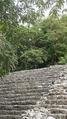 2017-12-07_12-25-55_ILCE-6500_DSC03019 (Miguel Discart (Photos Vrac)) Tags: 2017 55mm archaeological archaeologicalsite archeologiquemaya coba e1670mmf4zaoss focallength55mm focallengthin35mmformat55mm holiday ilce6500 iso125 maya mexico mexique sony sonyilce6500 sonyilce6500e1670mmf4zaoss travel vacances voyage yucatecmayaarchaeologicalsite yucateque