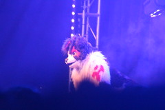 IMG_9011 (South Kitsune) Tags: fursuit furries furcon costumes cosplays caliur furry fandom