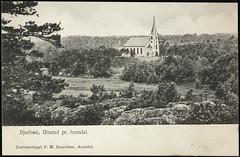 Postkort fra Agder (Avtrykket) Tags: eksteriør eng kirke postkort skog arendal austagder norway