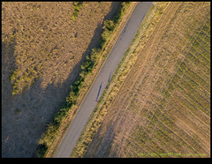 180723-0961-MAVICP-HDR.JPG (hopeless128) Tags: 2018 trees shadow self road me france fields vieuxruffec nouvelleaquitaine fr