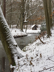 Elswout 2019: In a corner of the brook (mdiepraam) Tags: elswout 2019 haarlem trees snow cabin brook ice ngc